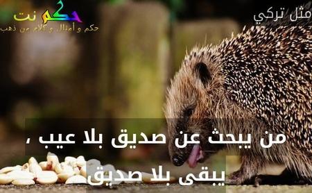 من يبحث عن صديق بلا عيب ، يبقى بلا صديق-مثل تركي