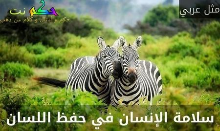 سلامة الإنسان في حفظ اللسان-مثل عربي