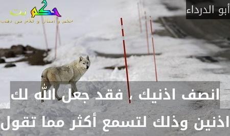 انصف اذنيك ، فقد جعل الله لك اذنين وذلك لتسمع أكثر مما تقول-أبو الدرداء