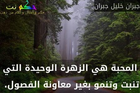 المحبة هي الزهرة الوحيدة التي تنبت وتنمو بغير معاونة الفصول. -جبران خليل جبران