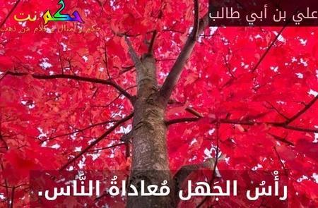 رأْسُ الجَهل مُعاداةُ النَّاس. -علي بن أبي طالب