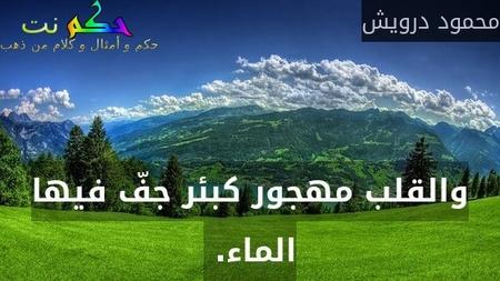 والقلب مهجور كبئر جفّ فيها الماء. -محمود درويش