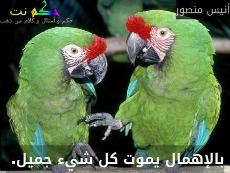 بالإهمال يموت كل شيء جميل. -أنيس منصور
