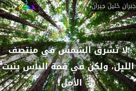لا تُشرق الشمس في منتصف الليل، ولكن في قمة اليأس ينبت الأمل! -جبران خليل جبران