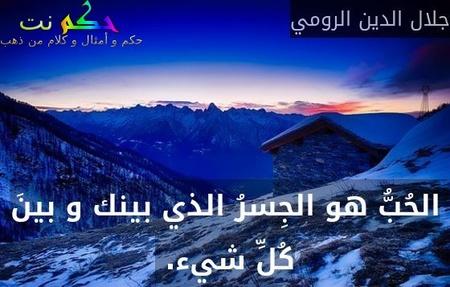 الحُبُّ هو الجِسرُ الذي بينك و بينَ كُلِّ شيء. -جلال الدين الرومي
