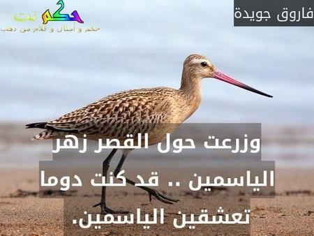 وزرعت حول القصر زهر الياسمين .. قد كنت دوما تعشقين الياسمين. -فاروق جويدة
