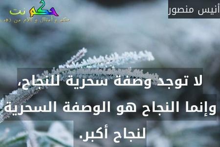 لا توجد وصفة سحرية للنجاح، وإنما النجاح هو الوصفة السحرية لنجاح أكبر. -أنيس منصور