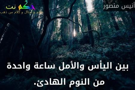 بين اليأس والأمل ساعة واحدة من النوم الهادئ. -أنيس منصور