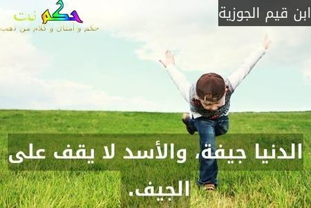 الدنيا جيفة، والأسد لا يقف على الجيف. -ابن قيم الجوزية