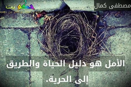 الأمل هو دليل الحياة والطريق إلى الحرية. -مصطفى كمال