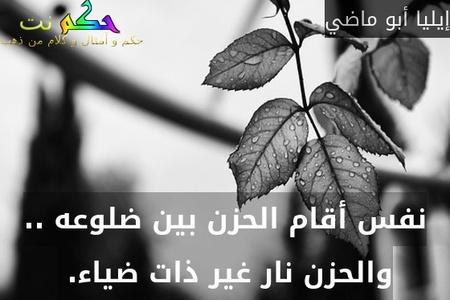 نفس أقام الحزن بين ضلوعه .. والحزن نار غير ذات ضياء. -إيليا أبو ماضي