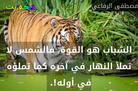 الشباب هو القوة، فالشمس لا تملأ النهار في آخره كما تملؤه في أوله!. -مصطفى الرفاعي
