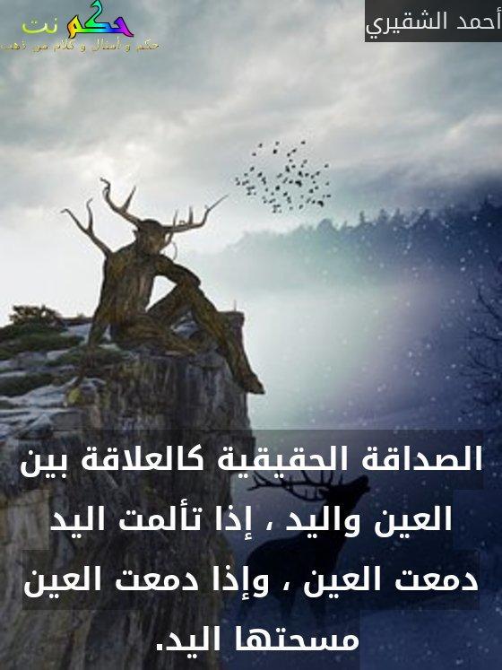 الصداقة الحقيقية كالعلاقة بين العين واليد ، إذا تألمت اليد دمعت العين ، وإذا دمعت العين مسحتها اليد. -أحمد الشقيري