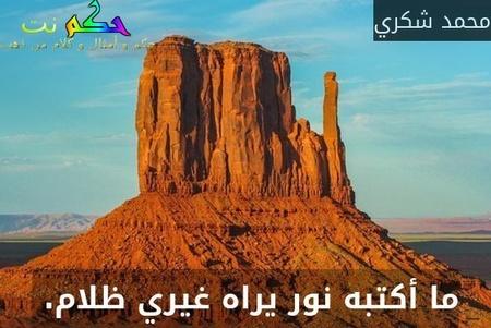 ما أكتبه نور يراه غيري ظلام. -محمد شكري