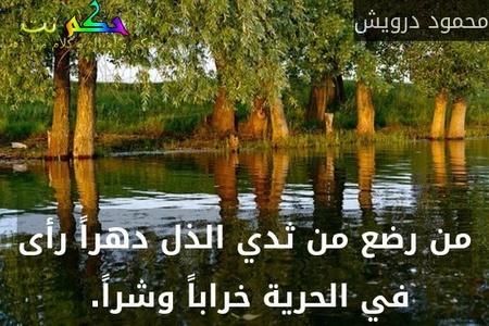 من رضع من ثدي الذل دهراً رأى في الحرية خراباً وشراً. -محمود درويش