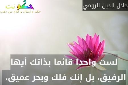 لست واحدا قائما بذاتك أيها الرفيق، بل إنك فلك وبحر عميق. -جلال الدين الرومي