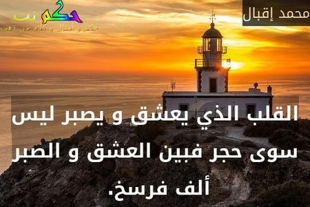 القلب الذي يعشق و يصبر ليس سوى حجر فبين العشق و الصبر ألف فرسخ. -محمد إقبال