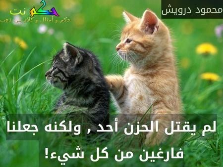 لم يقتل الحزن أحد , ولكنه جعلنا فارغين من كل شيء! -محمود درويش