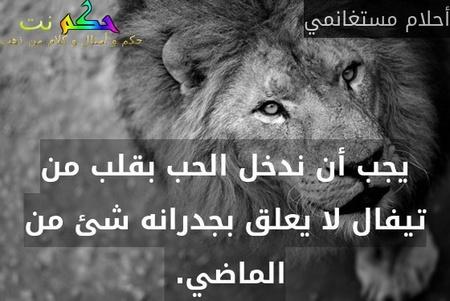 يجب أن ندخل الحب بقلب من تيفال لا يعلق بجدرانه شئ من الماضي. -أحلام مستغانمي