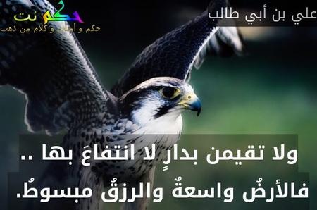 ولا تقيمن بدارٍ لا انتفاعَ بها .. فالأرضُ واسعةٌ والرزقُ مبسوطُ. -علي بن أبي طالب