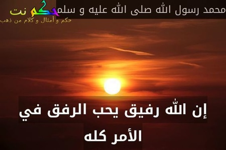 إن الله رفيق يحب الرفق في الأمر كله-محمد رسول الله صلى الله عليه و سلم