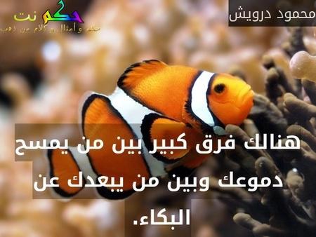 هنالك فرق كبير بين من يمسح دموعك وبين من يبعدك عن البكاء. -محمود درويش