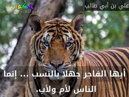 أيها الفاجر جهلا بالنسب ... إنما الناس لأم ولأب. -علي بن أبي طالب