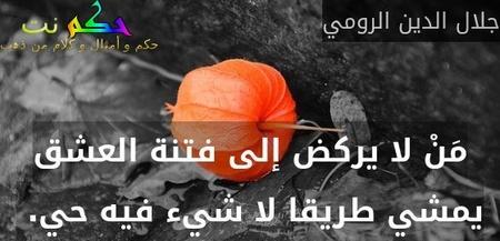 مَنْ لا يركض إلى فتنة العشق يمشي طريقا لا شيء فيه حي. -جلال الدين الرومي
