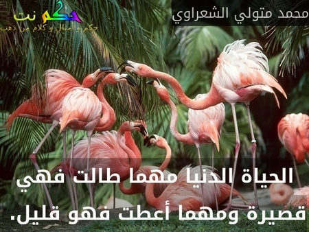 الحياة الدنيا مهما طالت فهي قصيرة ومهما أعطت فهو قليل. -محمد متولي الشعراوي
