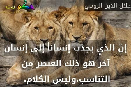 إنّ الذي يجذب إنساناً إلى إنسان آخر هو ذلك العنصر من التناسب،وليس الكلام. -جلال الدين الرومي