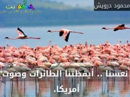 نعسنا .. أيقظتنا الطائرات وصوت أمريكا. -محمود درويش