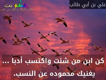 كن ابن من شئت واكتسب أدبا ... يغنيك محموده عن النسب. -علي بن أبي طالب