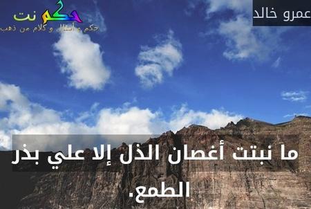 ما نبتت أغصان الذل إلا علي بذر الطمع. -عمرو خالد