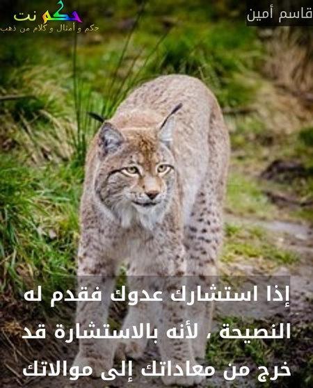 إذا استشارك عدوك فقدم له النصيحة ، لأنه بالاستشارة قد خرج من معاداتك إلى موالاتك-قاسم أمين