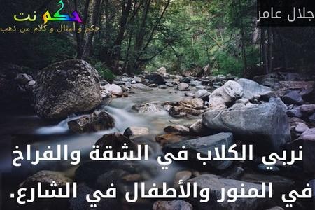 نربي الكلاب في الشقة والفراخ في المنور والأطفال في الشارع. -جلال عامر