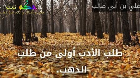 طلب الأدب أولى من طلب الذهب. -علي بن أبي طالب