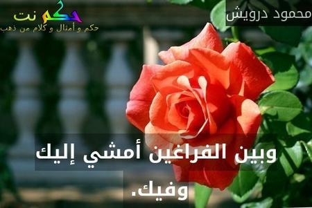 وبين الفراغين أمشي إليك وفيك. -محمود درويش