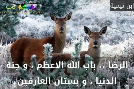 الرضا .. باب الله الاعظم ، و جنة الدنيا ، و بستان العارفين-ابن تيمية