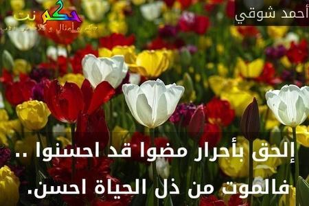 إلحق بأحرار مضوا قد احسنوا .. فالموت من ذل الحياة احسن. -أحمد شوقي