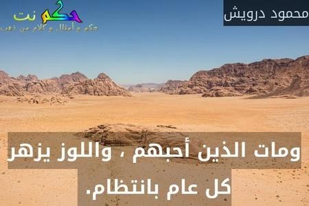 ومات الذين أحبهم ، واللوز يزهر كل عام بانتظام. -محمود درويش