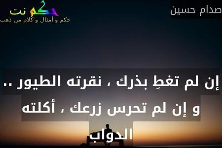 إن لم تغطِ بذرك ، نقرته الطيور .. و إن لم تحرس زرعك ، أكلته الدواب-صدام حسين