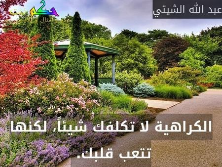 الكراهية لا تكلفك شيئاً، لكنها تتعب قلبك. -عبد الله الشيتي