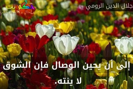 إلى أن يحين الوصال فإن الشوق لا ينته. -جلال الدين الرومي