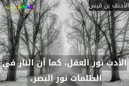 الأدب نور العقل، كما أن النار في الظلمات نور البصر. -الأحنف بن قيس
