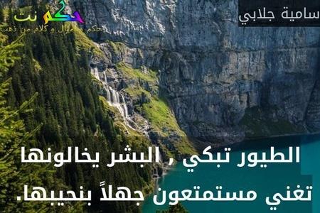 الطيور تبكي , البشر يخالونها تغني مستمتعون جهلاً بنحيبها. -سامية جلابي