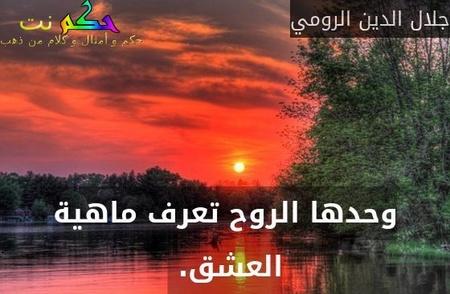 وحدها الروح تعرف ماهية العشق. -جلال الدين الرومي
