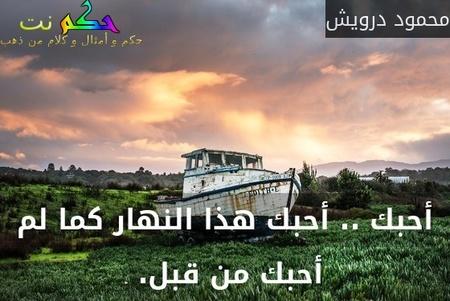أحبك .. أحبك هذا النهار كما لم أحبك من قبل. -محمود درويش