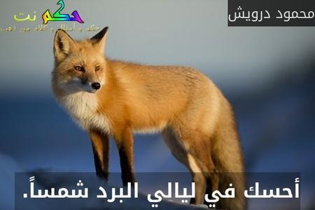 أحسك في ليالي البرد شمساً. -محمود درويش