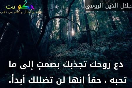 دع روحك تجذبكَ بصمتٍ إلى ما تحبه ، حقاً إنها لن تضللك أبداً. -جلال الدين الرومي