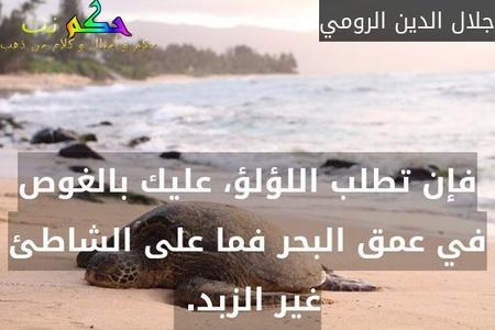 فإن تطلب اللؤلؤ، عليك بالغوص في عمق البحر فما على الشاطئ غير الزبد. -جلال الدين الرومي